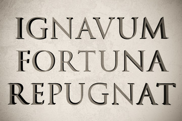 """Latin quote """"Ignavum fortuna repugnat"""" on stone background, 3d illustration - meaning """"Fortune disdains the lazy"""""""