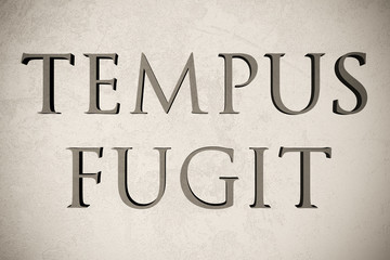 """Latin quote """"Tempus fugit"""" on stone background, 3d illustration - meaning """"Time flees"""""""