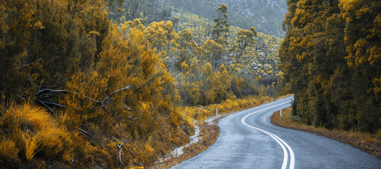 Road and mountains in the Tasmanian countryside