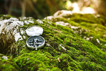compass in the forest.