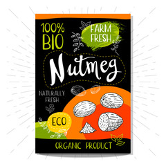 Colorful label in sketch style, food, spices, black background. Nutmeg. Nuts. Bio, eco, farm, fresh. locally grown. Hand drawn vector illustration.