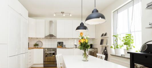 panorama horizontal banner of a stylish kitchen