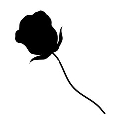 rose silhouettes isolated illustration on white background