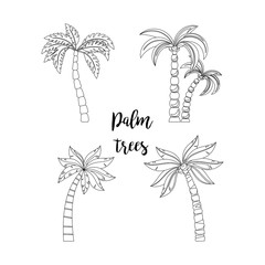 Palm trees beautiful set. Elements for coloring book pages, isolated on white background. Vector icons