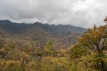 Fall at the Great Smoky Mountains National Park