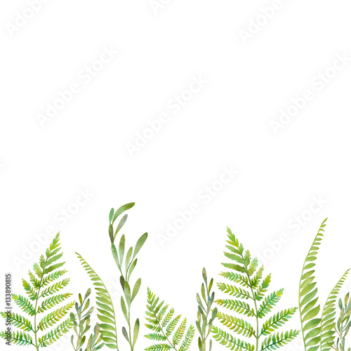 Watercolor Forest Plants Frame Hand Painted Greenery Border Isolated On White Background Fl Silhouette