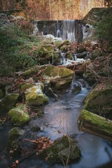 Forest Scene with Waterfall and Moss Rocks in Forest Brook
