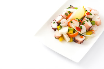 Traditional seafood ceviche from Peru isolated