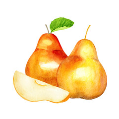 Sweet Pear. Autumn fruit. Watercolor illustration. Eco food