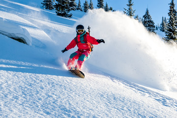 Young lady snowboarder in pink overall riding down on splitboard splashing snow