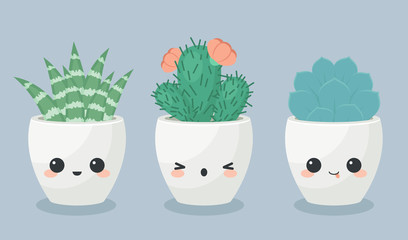 Succulents in kawaii faces flower pots