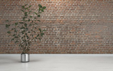 Indoor plant against brick wall with copy space