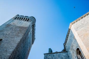Donjon de l'Abbé et Abbaye de Montmajour près d'Arles