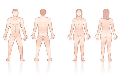 HUMAN BODY - naked man and woman, front and back view.