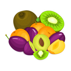 Composition of juicy apricot plum kiwi. Ripe vector apricots plums kiwifruits whole and slice appetizing looking. Group of tasty fruits for design packaging of juice, breakfast healthy eating vegan