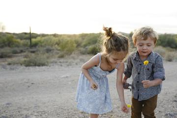Siblings picking flowers while standing on footpath against sky