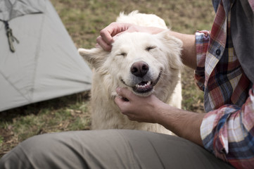 Midsection of man stroking dog at campsite