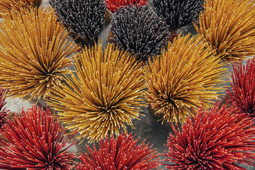Overhead view of incense sticks displayed at market