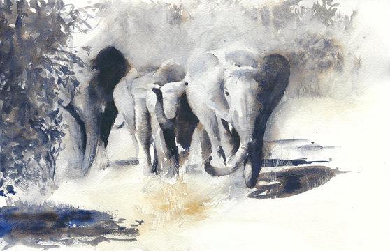Elephants watercolor painting african safari