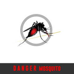 anopheles mosquito, danger creature, isilated