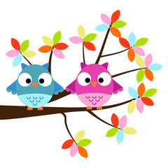 Two Owls sitting on the branch