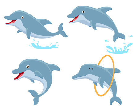 Cute Dolphin cartoon collection set