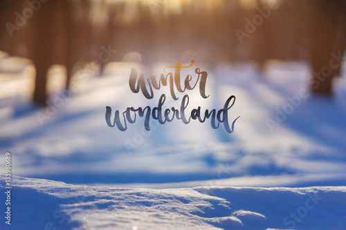 40eab6a5d7e188 Winter Wonderland - Inspirational quote on a winter landscape background