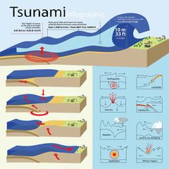 Инфографика показывает возникновение и развитие цунами, а также его классификация.
