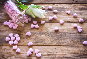 valentine's day, small pink candy heart shape, white rose