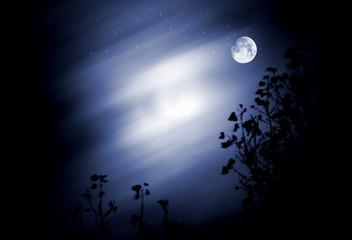Mond am Himmel