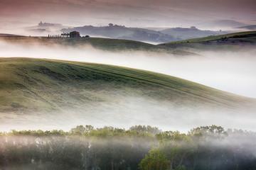 Misty Tuscany Landscape at dawn