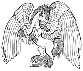 Vector illustration of Pegasus horse black and white