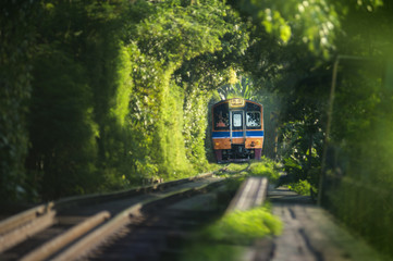 Image of blurry out of focus Steel railroad with blur bokeh of natural tunnel tree