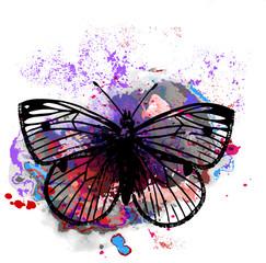 эскиз татуировки бабочка вотерколор