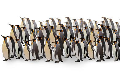 Penguins Illustration on White Background