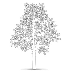 Tree with leaves for coloring book page vector