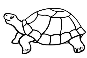 Turtle contour icon