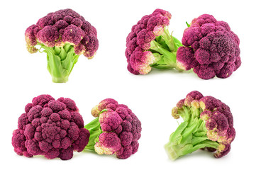 Purple italian cauliflower isolated on white
