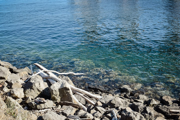 Pale driftwood on the tranquil shore of Elliott Bay and Puget Sound in Seattle