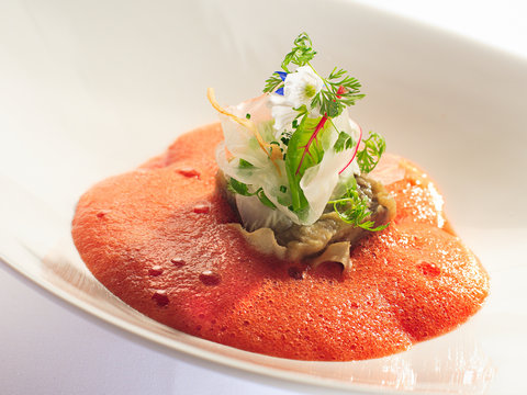 Gourmet dish of fennel and eggplant with tomato mousse and herbs