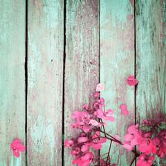 Wall Mural - pink flowers on vintage wooden background, border design. vintage color tone - concept flower of spring or summer background