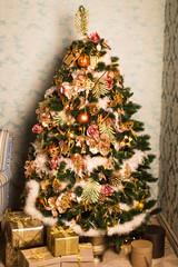 Christmas House with Christmas tree