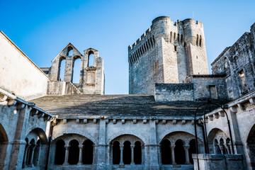 Le cloitre de l'Abbaye de Montmajour près d'Arles