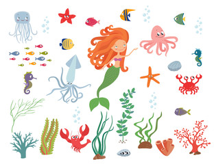 Underwater life collection
