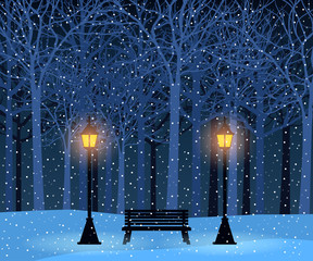 Winter park and outdoor landscape with bench, trees, streetlamps
