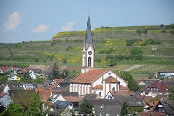 Fototapete - Ihringen am Kaiserstuhl