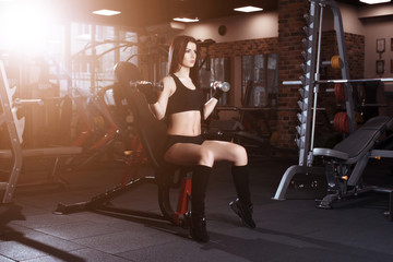 Attractive young woman working out with dumbbells in gym. Fitness girl execute exercise.