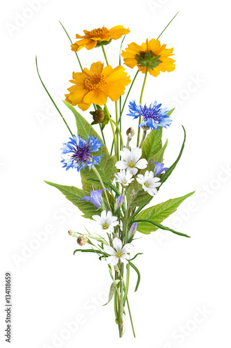 bouquet of the field wild flowers easter colors isolated stock photo and royalty free. Black Bedroom Furniture Sets. Home Design Ideas