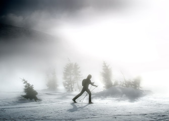 Woman on ski