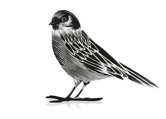 Schwarz Weiß Zeichnung eines Vogels Wall mural
